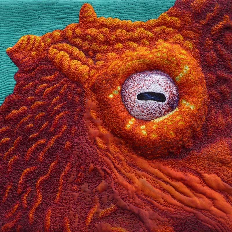 Karen McGregor - Eye of the Octopus