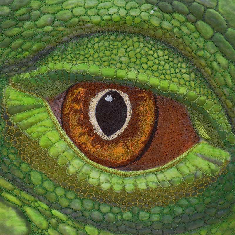 Sue Reid - Eye of the Lizard #1