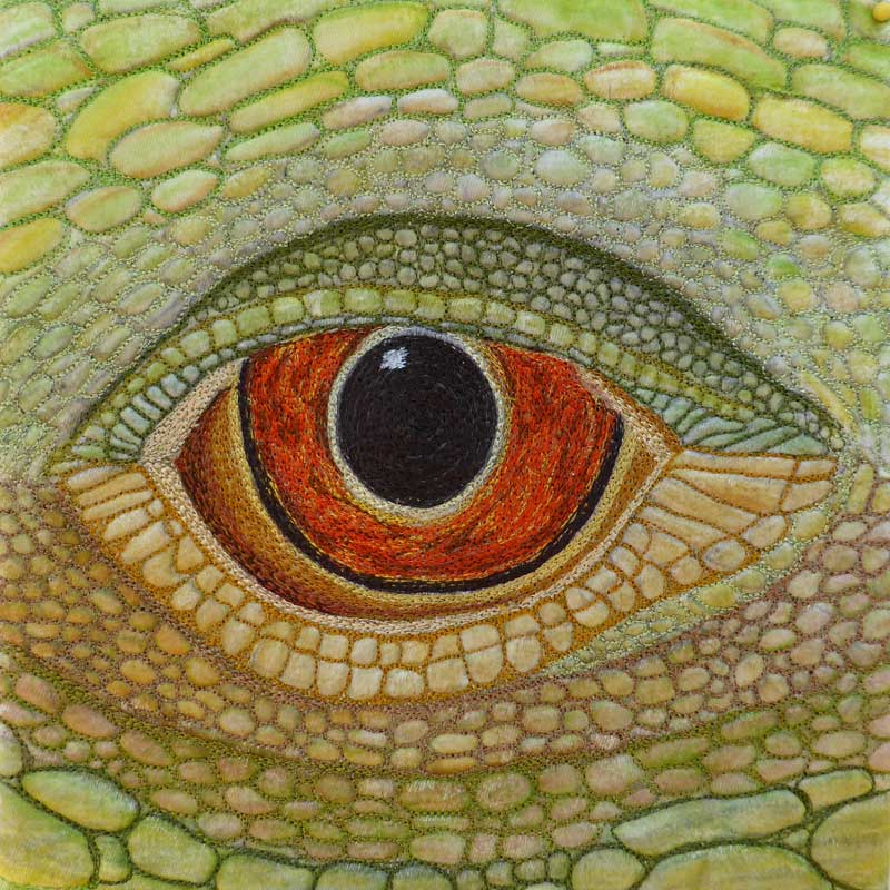 Sue Reid - Eye of the Lizard #2